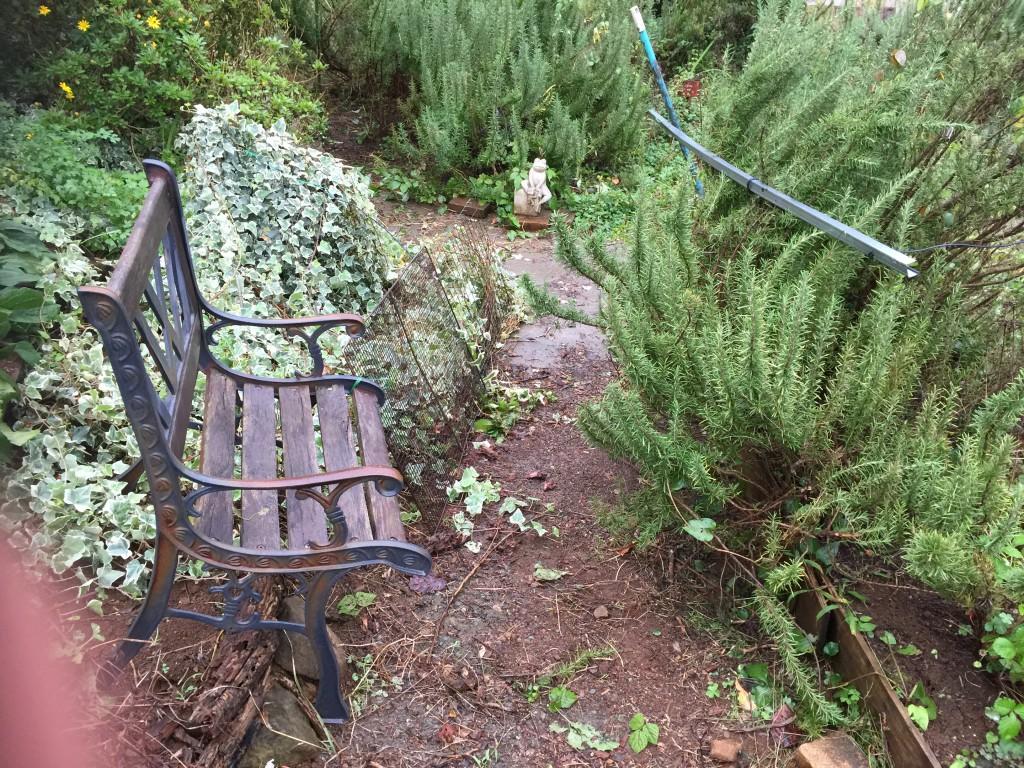 小道を占領してしまったヘデラを金網を立ててそこに這わすことにした。